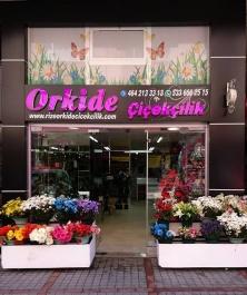 Rize ORKİDE Çiçekçilik